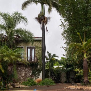 Residencia en venta en esquina, zona norte, col. Campestre. CM